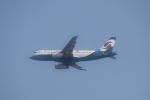 TAOTAOさんが、青島流亭国際空港で撮影した重慶航空 A319-133の航空フォト(写真)