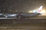 けーし135Rさんが、小松空港で撮影した日本航空 767-346/ERの航空フォト(写真)