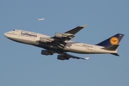 ファインディングさんが、羽田空港で撮影したルフトハンザドイツ航空 747-430の航空フォト(写真)