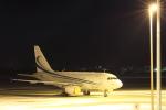 makorigeさんが、函館空港で撮影したMINTH グループ A318-112 CJ Eliteの航空フォト(写真)