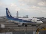 commet7575さんが、福岡空港で撮影したANAウイングス 737-5L9の航空フォト(写真)
