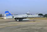 RA-86141さんが、ドンムアン空港で撮影したタイ王国空軍 F-5E Tiger IIの航空フォト(写真)
