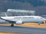 十六夜 NWAさんが、成田国際空港で撮影した日本航空 737-846の航空フォト(写真)