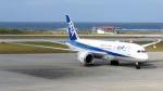 誘喜さんが、那覇空港で撮影した全日空 787-881の航空フォト(写真)
