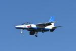 夏みかんさんが、岐阜基地で撮影した航空自衛隊 T-4の航空フォト(写真)