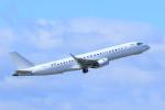 ストロベリーさんが、中部国際空港で撮影したアメリカ個人所有 ERJ-190-100 ECJ (Lineage 1000)の航空フォト(写真)