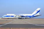 ストロベリーさんが、中部国際空港で撮影したヴォルガ・ドニエプル航空 An-124-100 Ruslanの航空フォト(写真)