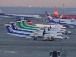 こしたくさんが、中部国際空港で撮影したANAウイングス DHC-8-402Q Dash 8の航空フォト(写真)