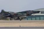 Willieさんが、茨城空港で撮影した航空自衛隊 RF-4EJ Phantom IIの航空フォト(写真)