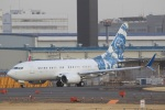 気分屋さんが、成田国際空港で撮影したBBJ One 737-7CJ BBJの航空フォト(写真)