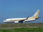 おっつんさんが、石垣空港で撮影した全日空 737-781の航空フォト(写真)