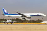 Orcaさんが、成田国際空港で撮影した全日空 777-381/ERの航空フォト(写真)
