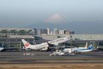 かずまっくすさんが、羽田空港で撮影した日本航空 737-846の航空フォト(写真)