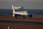 canon_leopardさんが、中部国際空港で撮影した日本航空 787-846の航空フォト(写真)