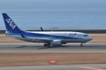 japan hayabusaさんが、中部国際空港で撮影した全日空 737-781の航空フォト(写真)