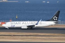 TAK10547さんが、羽田空港で撮影した全日空 737-881の航空フォト(写真)