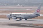 mild lifeさんが、伊丹空港で撮影した日本航空 737-846の航空フォト(写真)