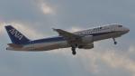 Cassiopeia737さんが、高知空港で撮影した全日空 A320-211の航空フォト(写真)