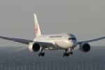 なぞたびさんが、中部国際空港で撮影した日本航空 787-846の航空フォト(写真)