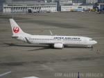 ◆oRT4jqzTBUさんが、中部国際空港で撮影した日本航空 737-846の航空フォト(写真)