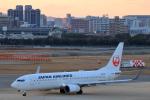 Fat Methenyさんが、福岡空港で撮影した日本航空 737-846の航空フォト(写真)