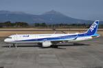 たっしーさんが、鹿児島空港で撮影した全日空 A321-211の航空フォト(写真)