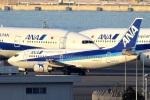 north-wingさんが、羽田空港で撮影したANAウイングス 737-54Kの航空フォト(写真)