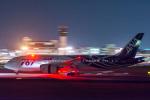 てらこったさんが、伊丹空港で撮影した全日空 787-881の航空フォト(写真)