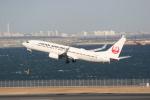 いっとくさんが、羽田空港で撮影した日本航空 737-846の航空フォト(写真)