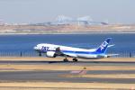 おっしーさんが、羽田空港で撮影した全日空 787-881の航空フォト(写真)