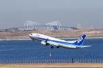 おっしーさんが、羽田空港で撮影した全日空 737-881の航空フォト(写真)