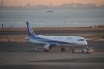pepeA330さんが、羽田空港で撮影した全日空 A321-131の航空フォト(写真)