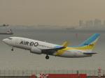 とりてつさんが、羽田空港で撮影したAIR DO 737-781の航空フォト(写真)