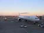 Y.Hさんが、成田国際空港で撮影した日本航空 777-346/ERの航空フォト(写真)