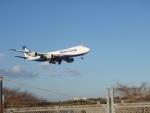 dnaさんが、成田国際空港で撮影した日本貨物航空 747-8KZF/SCDの航空フォト(写真)
