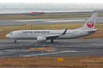 PASSENGERさんが、関西国際空港で撮影した日本航空 737-846の航空フォト(写真)