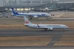 Perdita_1さんが、羽田空港で撮影した日本航空 737-846の航空フォト(写真)