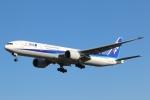 まえちゃさんが、成田国際空港で撮影した全日空 777-381/ERの航空フォト(写真)