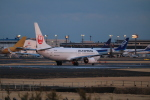 msrwさんが、成田国際空港で撮影した日本航空 737-846の航空フォト(写真)