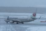 Simeonさんが、新千歳空港で撮影した日本航空 737-846の航空フォト(写真)