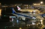 おぎしんさんが、中部国際空港で撮影した全日空 787-881の航空フォト(写真)
