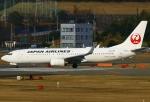 あしゅーさんが、福岡空港で撮影した日本航空 737-846の航空フォト(写真)