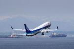 nagoya888さんが、中部国際空港で撮影した全日空 737-881の航空フォト(写真)