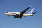 utarou on NRTさんが、成田国際空港で撮影した全日空 737-781の航空フォト(写真)