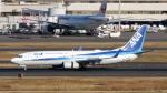 誘喜さんが、羽田空港で撮影した全日空 737-881の航空フォト(写真)