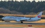 Wasawasa-isaoさんが、成田国際空港で撮影した日本航空 737-846の航空フォト(写真)