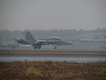 FY1030さんが、茨城空港で撮影したアメリカ海兵隊 F/A-18D Hornetの航空フォト(写真)