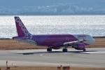 qooさんが、関西国際空港で撮影したピーチ A320-214の航空フォト(写真)