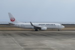 職業旅人さんが、奄美空港で撮影した日本航空 737-846の航空フォト(写真)