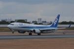 qooさんが、伊丹空港で撮影した全日空 737-881の航空フォト(写真)